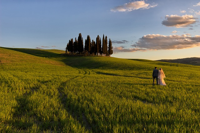 Open field of wedding couple