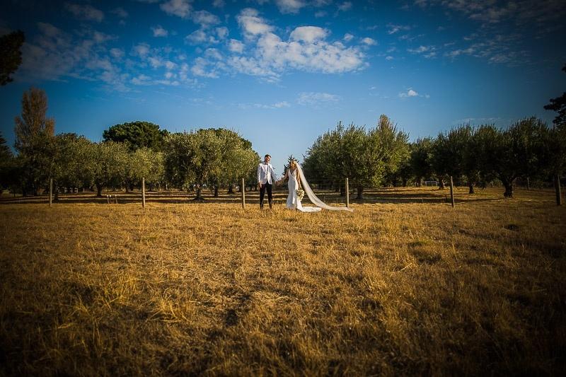 Bridal Couple Olive grove
